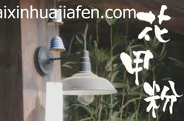 锡纸花甲粉丝的做法_教程教学_【开心花甲粉加盟网】